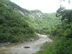 River In Belize