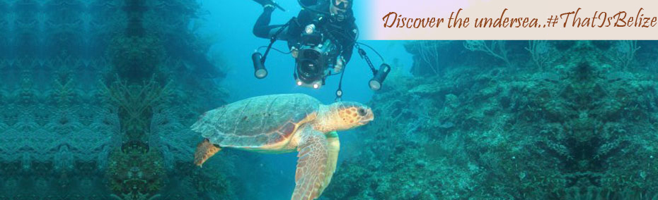 Discover the undersea...that is Belize